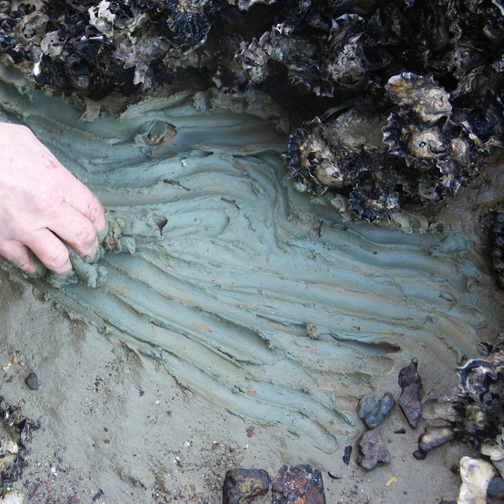 Gathering clay in Anzac Bay, Waiheke Island. Photo Pertti Mäkelä.